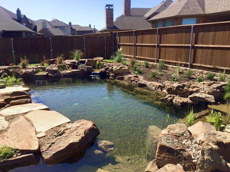 Dallas/Fort Worth Koi Pond