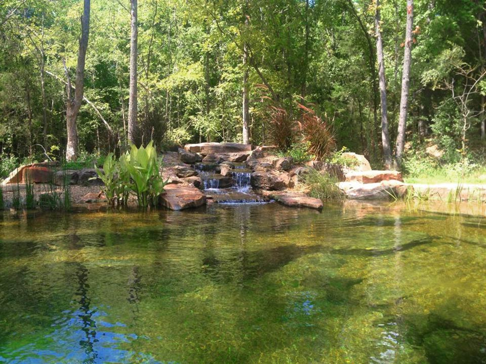 Landscape pond waterfall ideas for your backyard plano for Natural pond maintenance