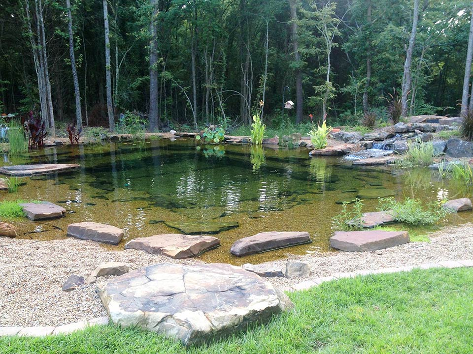 Landscape Pond Amp Waterfall Ideas For Your Backyard Plano