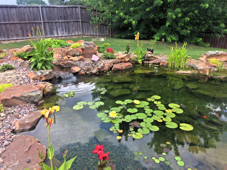 Pond Leak